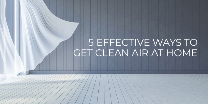 Effective Ways To Get Clean Air At Home