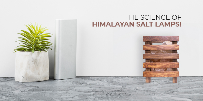 The Science of Himalayan Salt Lamps!
